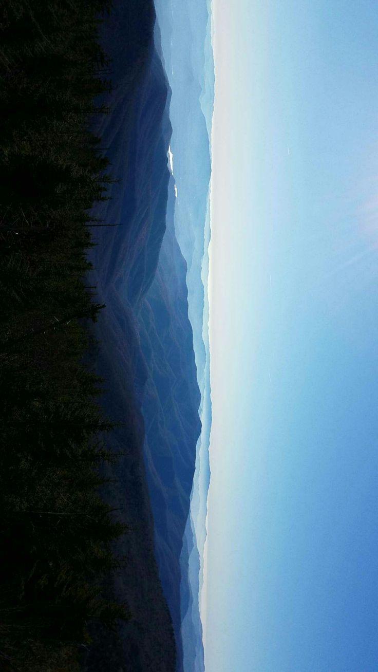 Great Smokey Mountains, Nc, Usa. [oc] [1440x2560]