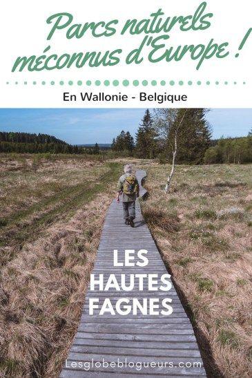 Promenade dans les tourbières du parc naturel des Hautes Fagnes Eifel