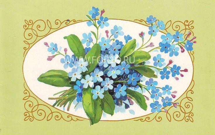 flowers_to_order_0389.jpg (866×545)