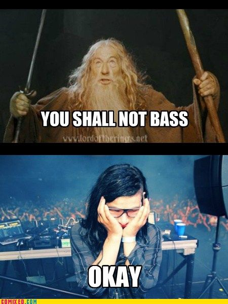 Y u make Skrillex sad?!?!