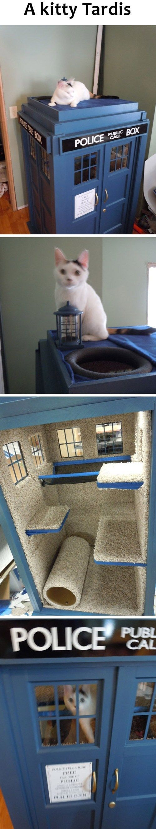 Kitty Tardis.  I must build this.