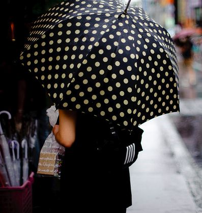 I purchased a similar umbrella for $5 from a street in Toronto. That was 18 years ago and I still use the umbrella whenever it rains.