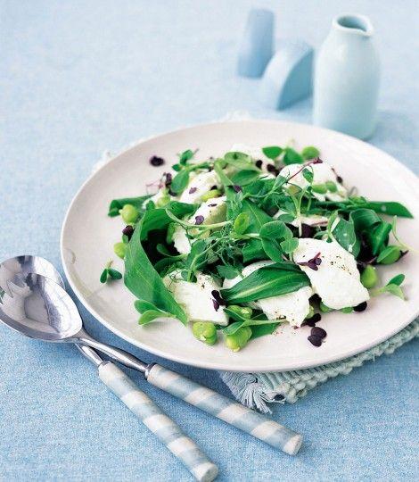 Buffalo-mozzarella-with-broad-bean-salad