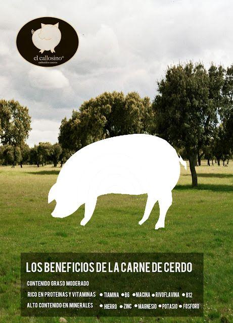 #BENEFICIOS DE LA #CARNE DE #CERDO | #Embutidos #elcallosino