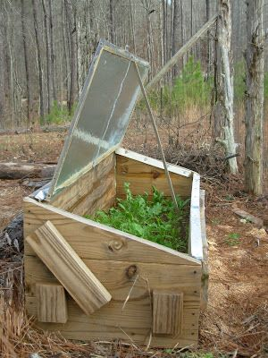 Mary Ann's Country Garden: Build a Cold Frame and Harvest Vegetables All Winter