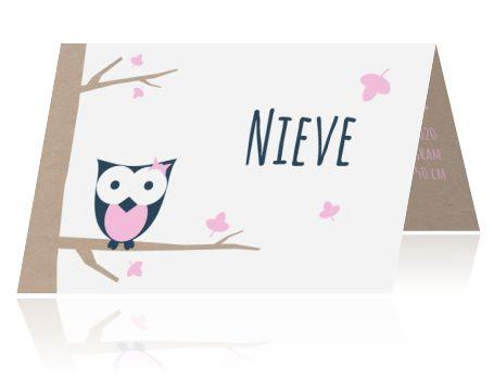 Origineel en illustratief geboortekaartje voor een meisje. Met een tak van kraftpapier, leuke uil en roze blaadjes.