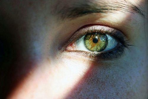 34 Best Hazel Eyes Images On Pinterest Beautiful Eyes