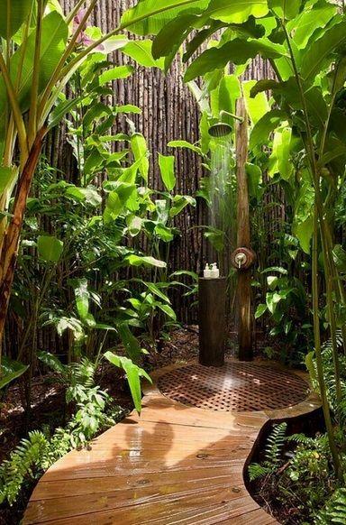 bamboo paradise.jpg
