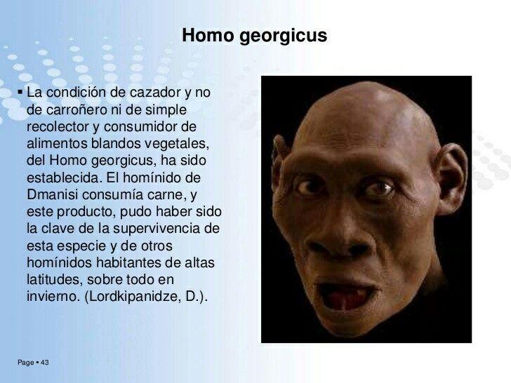 Homo georgicuses unaespeciedehomínido establecida en 2002 a partir de losfósiles encontrados un año antes enDmanisi, en el Cáucaso, República deGeorgia. En un principio se consideró intermedia entre elHomo habilisy elHomo erectus,y relacionada con elHomo ergaster. Losfósilesse han datado entre 1,8 y 1,6 millones de años. El tamaño delcerebrose ha calculado entre 600 y 680 c.c. La estatura se ha estimado en 1,5 m.