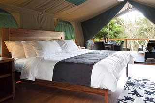Drop everything: There is such thing as luxury camping.   #glamping #luxurycamping #australia #parenting #travel