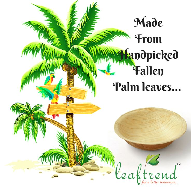 Disposable palm leaf plates are best suited for weddings, parties, picnics, outdoor caterings, celebrations, environmental friendly event and others. These eco-friendly palm leaf plates can be used as dinnerware, tableware, outdoor dining plates, single use plates, and many more. #palmleafplates   #dinnerideas   #ecofriendly   #party   #disposableplates   #dinnersets  leaftrend.com