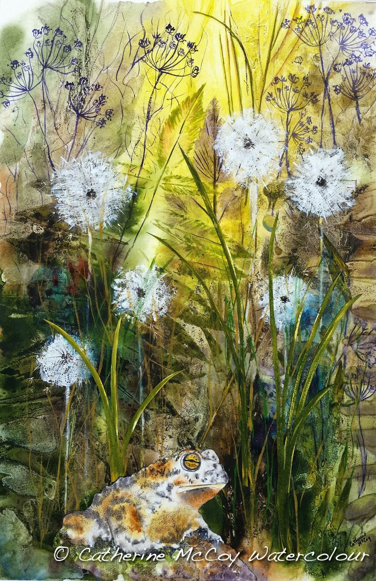 """Life in the Grass. Watercolour 14"""" x 21"""" by Catherine McCoy"""