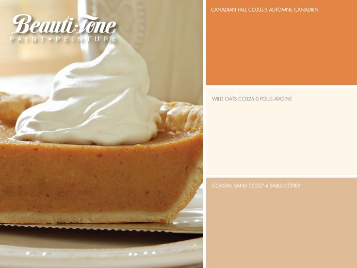 This decadent #Autumn colour scheme from #BeautiTone, is reminiscent of #pumpkin pie, however this palette is calorie free!