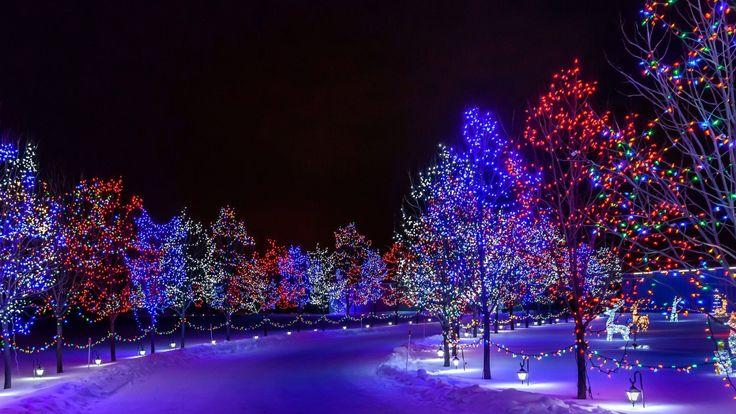 Best christmas lights display ideas on pinterest