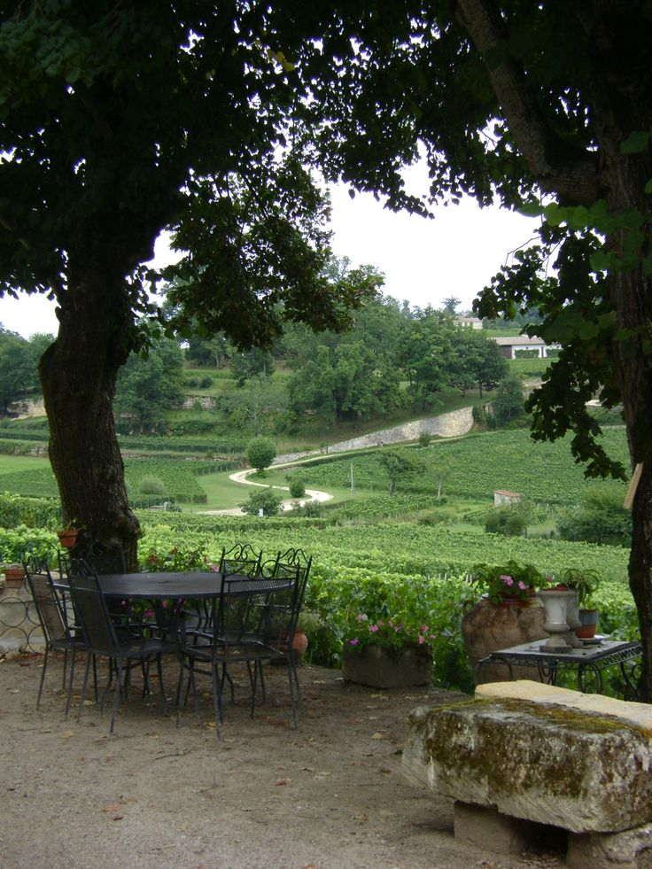 42 best Saint Emilion, between history and vineyards images on