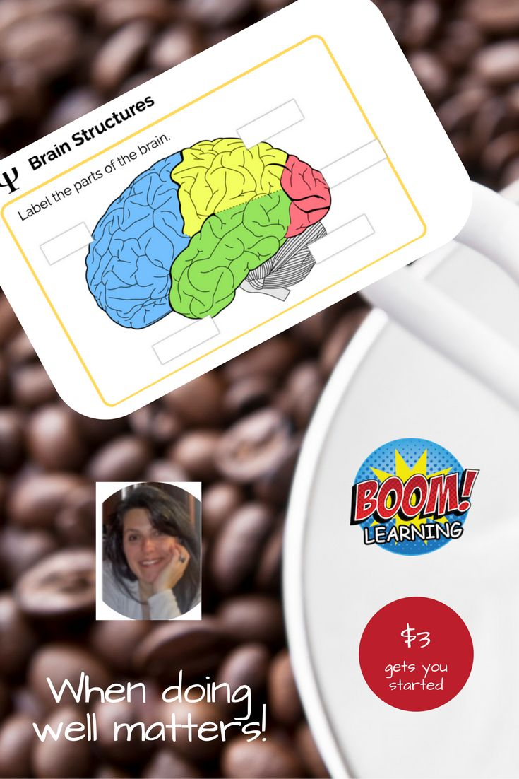 Review the location and function of the 4 lobes of the cerebral cortex and the cerebellum. Format is factual recall and application-style questions. Suitable for 1:1 review, homework, test prep or interactive whiteboard lesson. Use on laptop, tablet, or phone.
