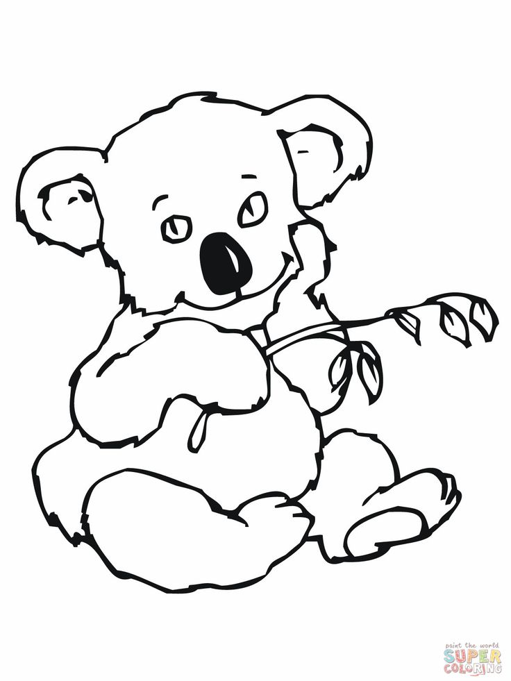 online koala coloring pages - photo#14