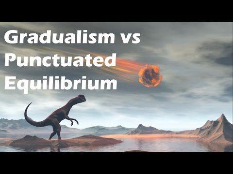 Gradualism vs Punctuated Equilibrium - YouTube