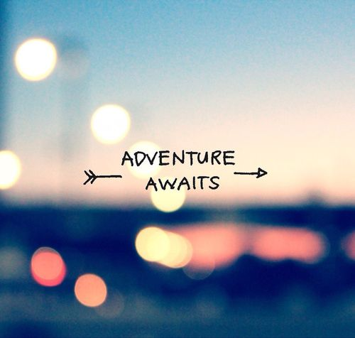 Quotes On Adventure Awesome 281 Best Travel Quotes ✈ Images On Pinterest  Lets Run Away . Decorating Design
