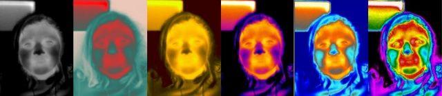 Palettes de couleurs artificielles pour la thermographie, ici FLIR - Palette's variation in thermography, a FLIR model