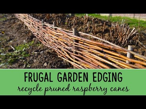 DIY Garden Edging using Pruned Raspberry Canes - Lovely Greens