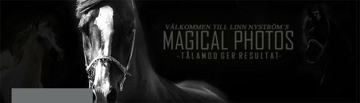 Nature´s Magical Creatures - Tålamod ger resultat