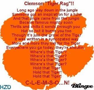 #tiger rag