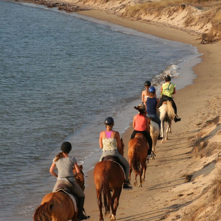 Are you seeking a new traveling experience? Whether you're looking to gallop on the beach or to stomp grapes into wine our #Alternative #Ventures in #Greece can answer your call