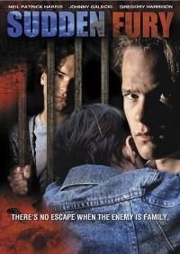 When a couple is viciously murdered in their own home, all the evidence points to one or both of the parents' foster kids - either bad boy Daniel or good son Brian. It's a tale as shocking as the killing involving the Menendez brothers, and it's also ripped right from the headlines.  Also called Sudden Fury.