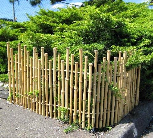 Bamboo picket fence Gardening Greatness Pinterest