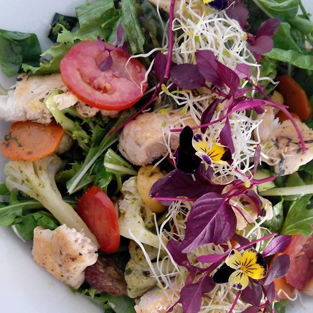 Ensalada de pollo al estragon  con vegetales del Vallecito.