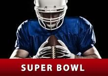 BET ON THE SUPER BOWL check out the odds on superbowl 2015 teams. Did you know what the stats are on the game?