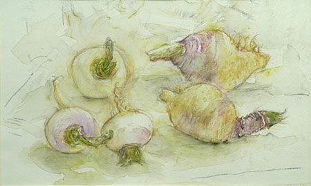 Janet Dawson. Vegetable study II. 1997