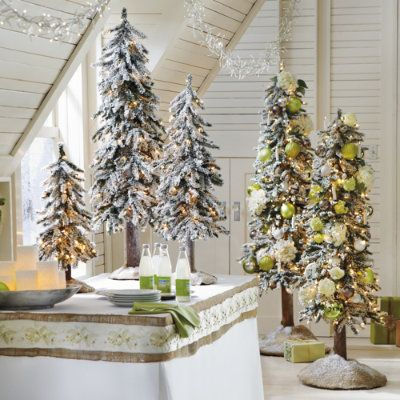 17 best images about christmas dinner on pinterest trees for Alpine decoration