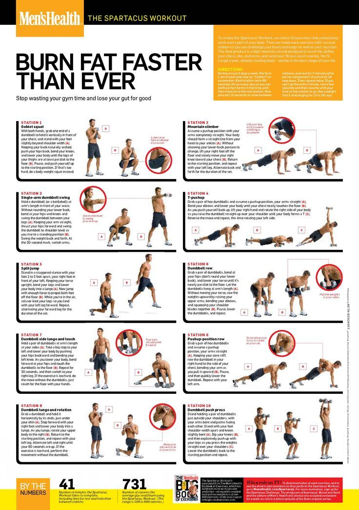 The Spartacus Workout! yes it's from men's health but this is a great workout for women too. Burns an average of 731 calories in 41 minutes; and all you need is a dumbbell. workout plans, workouts #workout #fitness