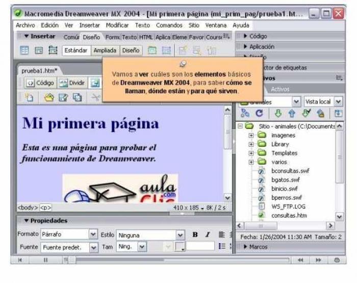 Macromedia flash mx serial key office 2010