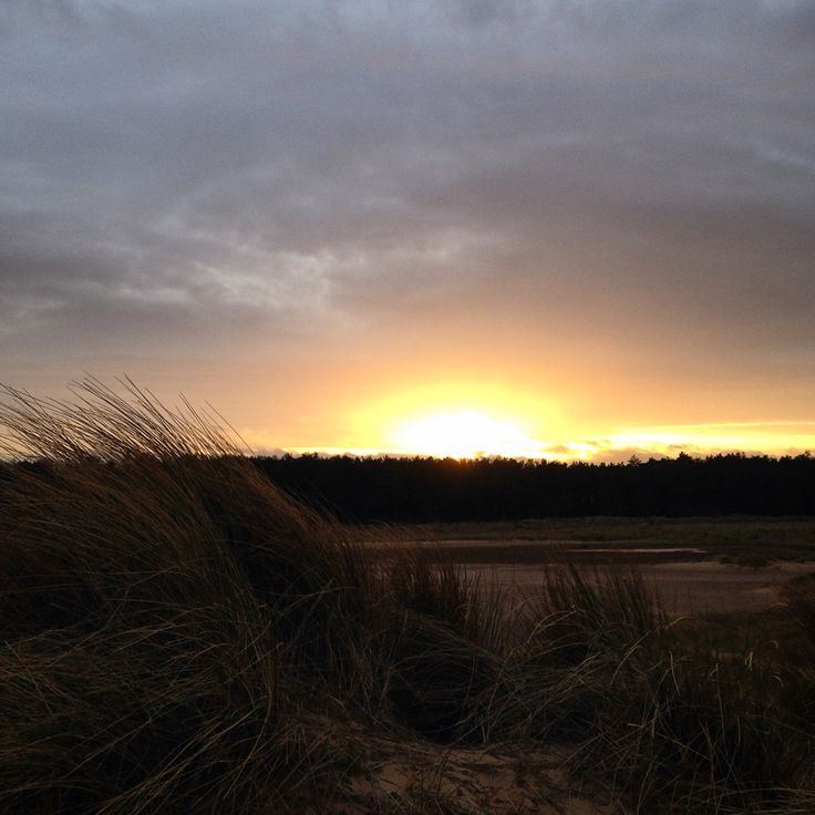 On Holkham beach, back to the sea, watching the sun set behind the pines that line this part of the Norfolk coastline. Beautiful part of Great Britain, even on a windy January afternoon!