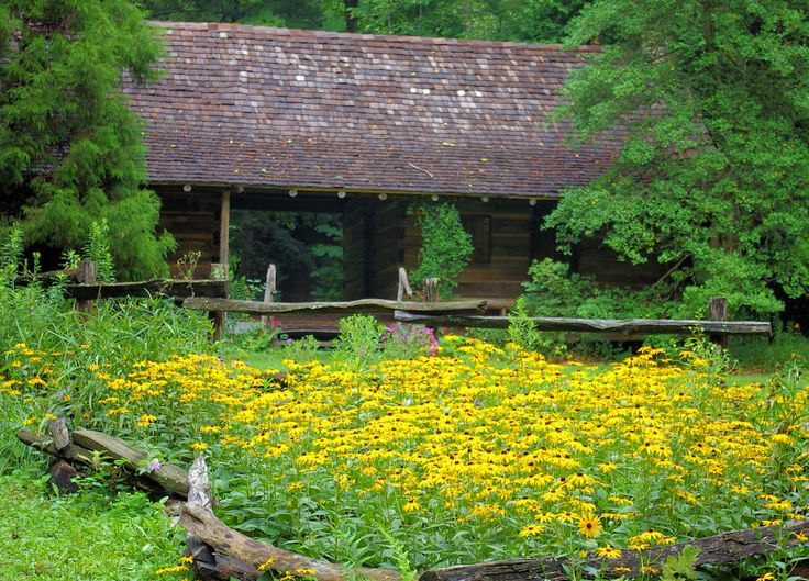 Botanical Gardens of Asheville - at UNCA near downtown