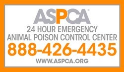 Did you know the ASPCA Poison Control Center is available 24/7 at (888) 426-4435? They're staffed by veterinary toxicologists and who can help you if you think your pet may have ingested a toxic substance. We recommend keeping their phone number handy – just in case! We're also here for you during normal business hours, as is the Veterinary Emergency and Specialty Hospital at 665-4911!