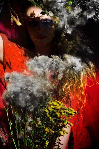 'harvest shadow' by Sirkku Tuomela 2015