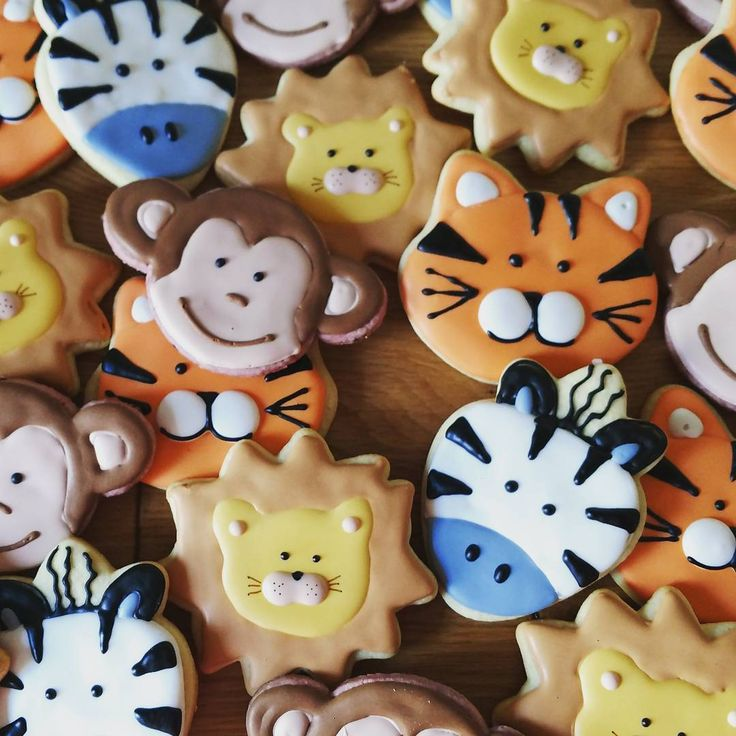 It was a jungle in my kitchen this morning!  .  .  .  #cookies #sugarcookies #sugar #decoratedcookies #birthdaycookies #birthdaytreats #goodies #goodiebag #raspberrycookies  #junglecookies #lions #tigers #zebras #monkeys #animalcookies #animals #sweets #desserts #treats #bakedgoods #boston #bostonfoodies #bostoneats #foodporn #icingcookies #icing #sweetsugarbelle