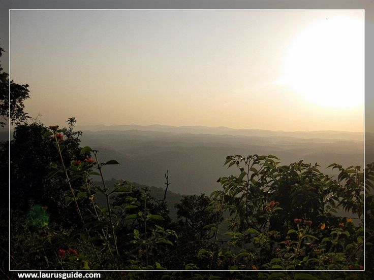 The calm and peaceful Dandeli Wildlife Sanctuary is spread over 834.16 sq. km and rewarded as the second largest wildlife sanctuary in Karnataka. Dandeli Wildlife Sanctuary is neighboring with the Mahaveer sanctuary in Goa. The altitude of Dandeli varies from 100 m to 970 m; the highest point is the Hegada Temba.  Dandeli is also a perfect place for white water rafting. Dandeli has become one of the important tourist destinations of Karnataka and attracts many local and foreign tourists.