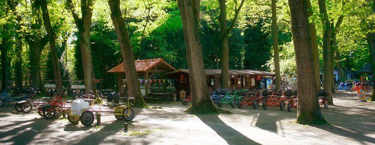Piet Plezier Recreatie, Oisterwijk. Skelter huren en tochtje rijden door de bossen. Routes verkrijgbaar. Onderweg even stoppen bij Boshuis Venkraai in het bos en genieten van een hapje of drankje.