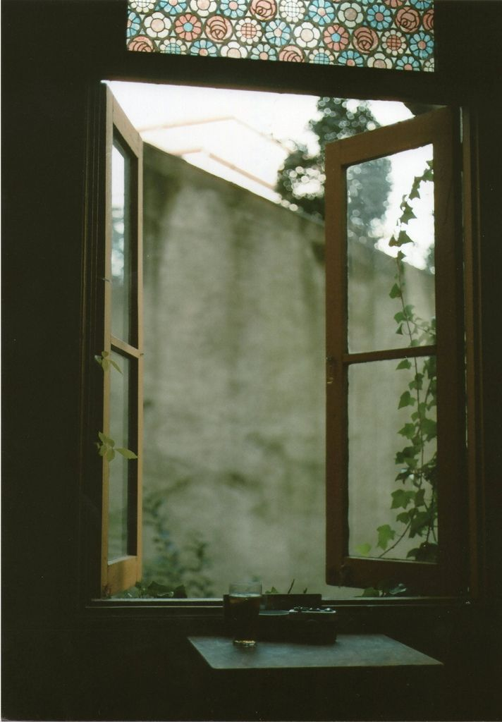 Surely this must be the window through which the O'Henry heroine watched for that last ivy leaf to fall...that never fell...beautiful!