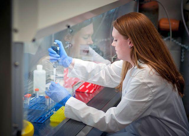 Para ahli riset Departemen Pertahanan telah mengukuhkan penemuan bakteri yang kebal terhadap antibiotik dalam air seni seorang perempuan yang mengunjungi klinik militer bulan lalu. baca berita selangkapnya di www.deimagnez.com