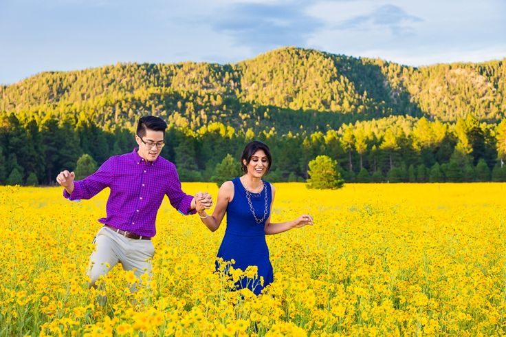 Field Of Flowers Wedding Michigan : Best images about pre wedding engagement shoot ideas on