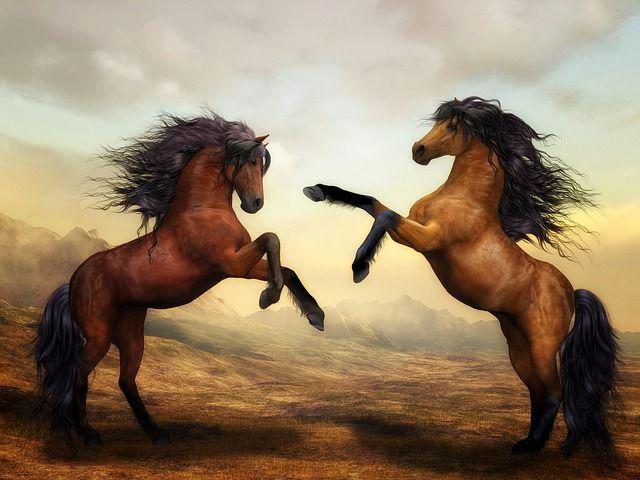 Free photo: Horses, Wild Horses, Digital Art - Free Image on Pixabay - 2904536