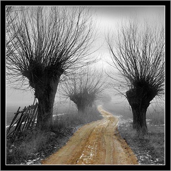 Fog Road - Szczecin, Zachodniopomorskie