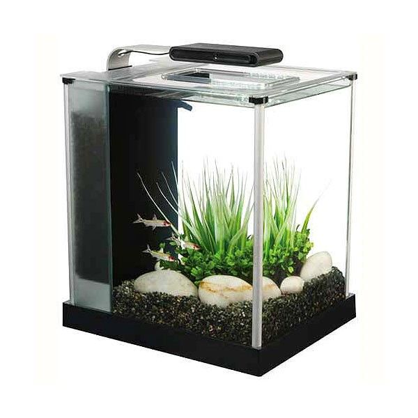 the 25+ best mini aquarium ideas on pinterest | food crafts, jello, Wohnzimmer