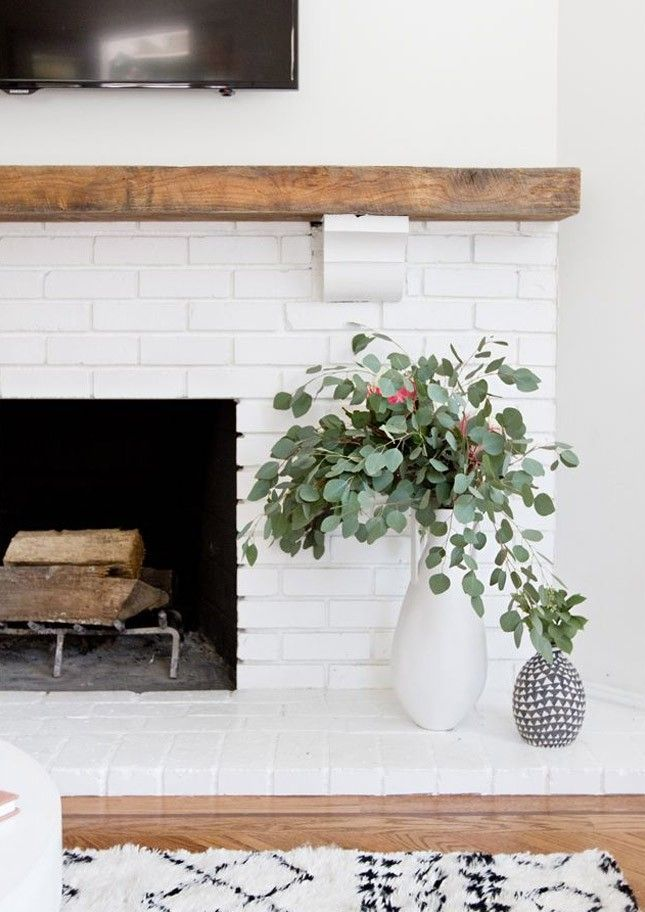 Eucalyptus plants are perfect for your bedroom or bathroom.